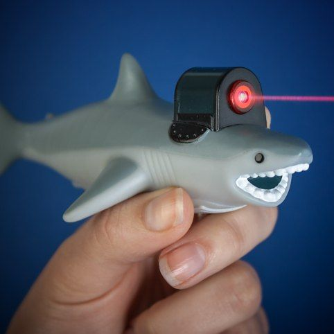 """Looking at gift ideas and stumbled across this...made me laugh.  They call it """"Shark with Frickin Laser Beam"""""""