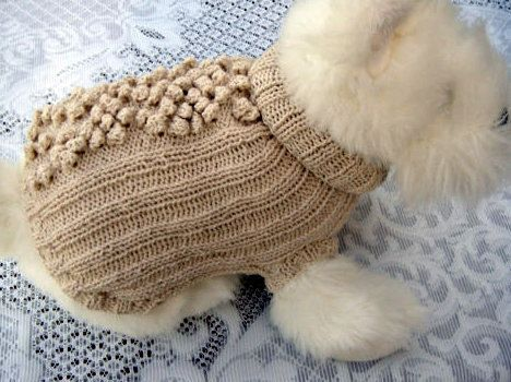 Hey, I found this really awesome Etsy listing at https://www.etsy.com/ca/listing/108575977/dog-jumper-cat-jumper-dog-clothes-dog