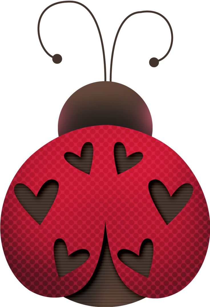 86 best coccinelle images on pinterest lady bugs animals and