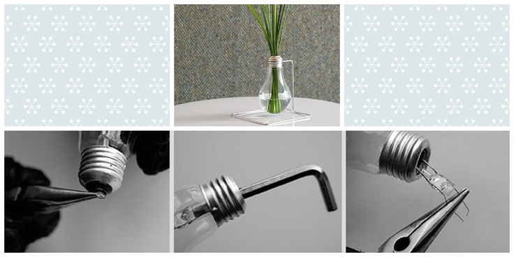 vase from a bulb