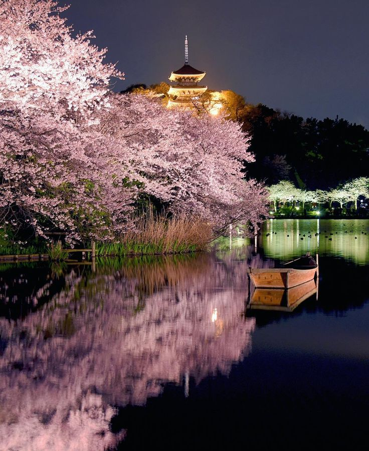 Beautiful Places In Japan Tumblr: 243 Best Beautiful Places In Japan Images On Pinterest