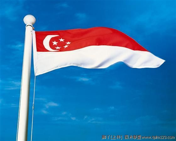 Singapore Flag #1 Retail NEW 100% Polyester Printed Flying 192x288 cm Singapore National Flag for Mixed