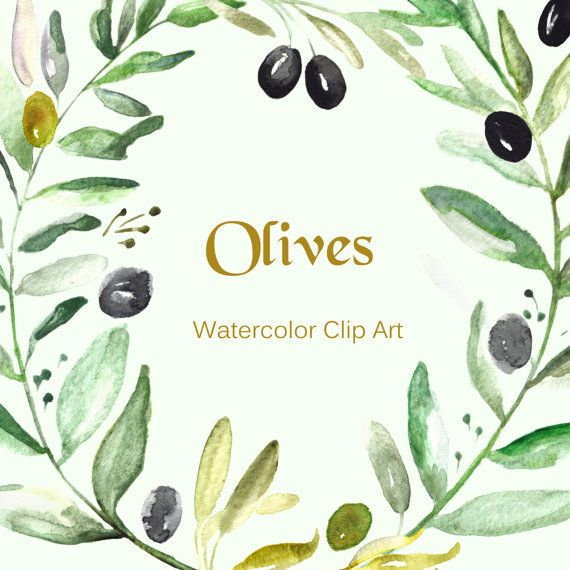 Olives Watercolor clip art hand drawn. Romantic by LABFcreations