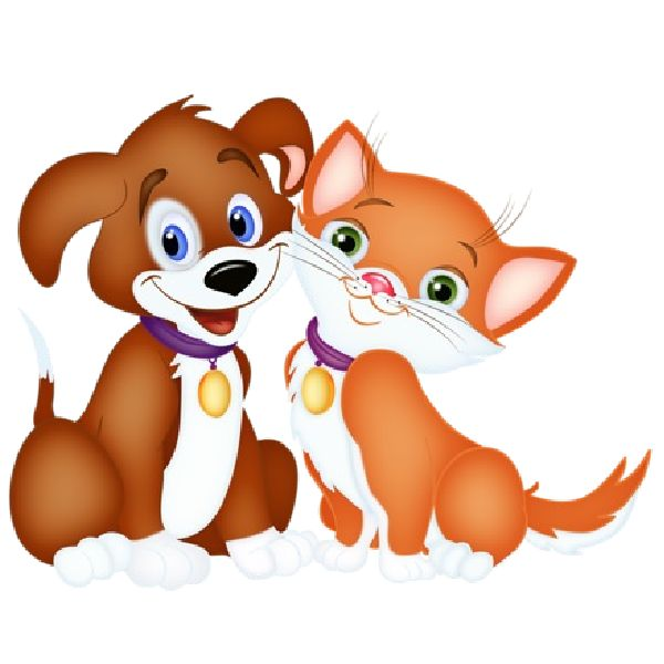 Cat Dog Cartoon | Cat And Dog Cartoon Pictures | Places to ...