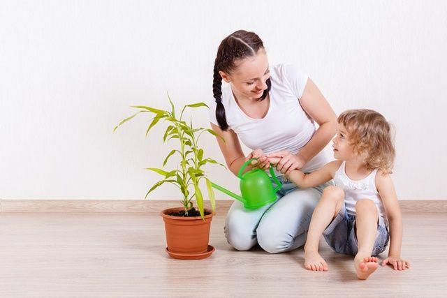 efectele secundare ale plantelor secundare chef tony mod la pierderea de grăsime