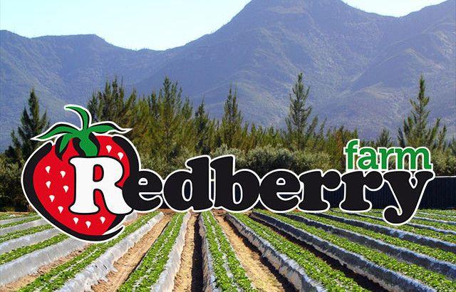 Redberry Farm George http://www.redberryfarm.co.za/contact-us/