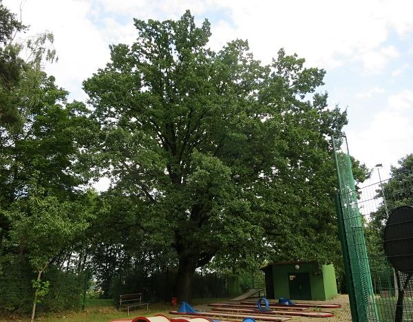Praha - Park u zámečku Hanspaulka