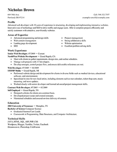 Best IT Web Developer Resume Example