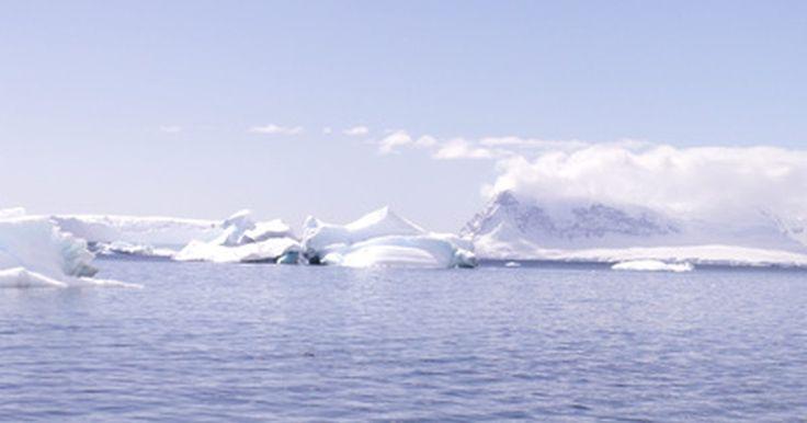 Animales en la zona glacial. Aunque las zonas glaciales, también conocidas como el Ártico y el Antártico, tienen climas muy fríos, son el hogar de muchos mamíferos y aves marinas interesantes. Muchos mamíferos viven en el Ártico porque son capaces de emigrar a través de la tierra hacia los veranos cálidos. El océano Antártico, por otra parte, separa la Antártida de otros ...
