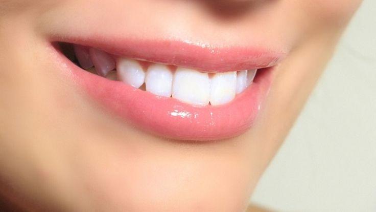 Dan primeros pasos en la regeneración de dientes humanos - http://webadictos.com/2015/10/22/regeneracion-de-dientes/?utm_source=PN&utm_medium=Pinterest&utm_campaign=PN%2Bposts