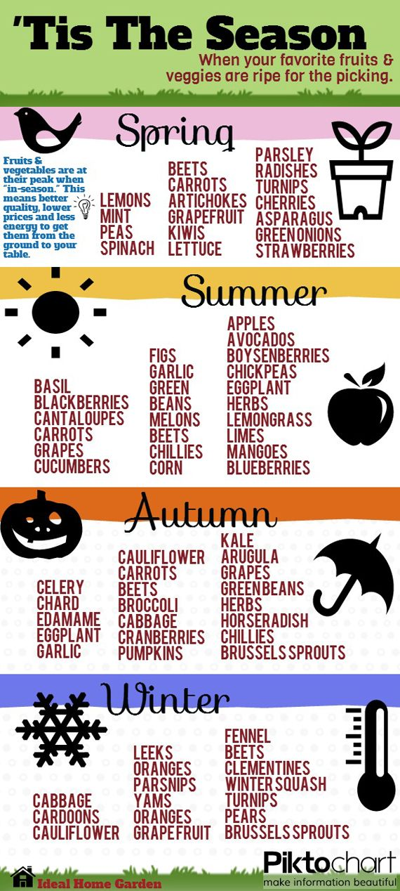 Handy infographic when fruit and vegetables are in season. #plantbased