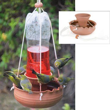 Handmade terracotta bird feeder. Simply fill a recycled plastic 1-2 litre bottle with sugar water, upend it into the feeder, hang it from a tree and watch the nectar-feeding birds flock in. Tuis will quickly claim your garden and entertain you for hours with their aerial acrobatics.