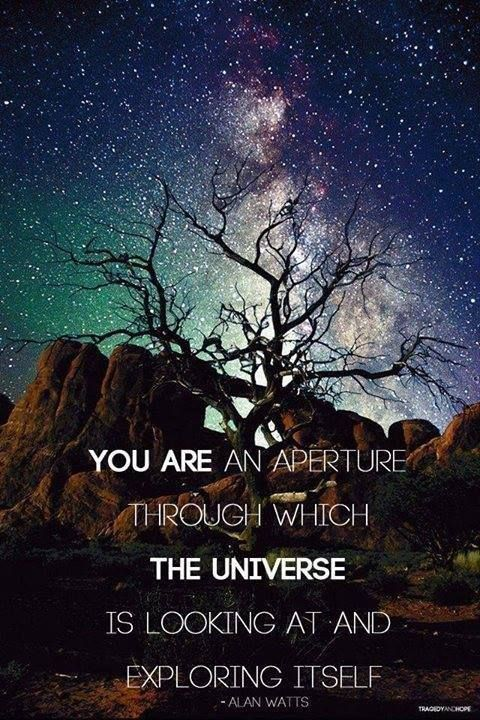 """""""You are an aperture through which the universe is looking at and exploring itself."""" ― Alan Wilson Watts"""