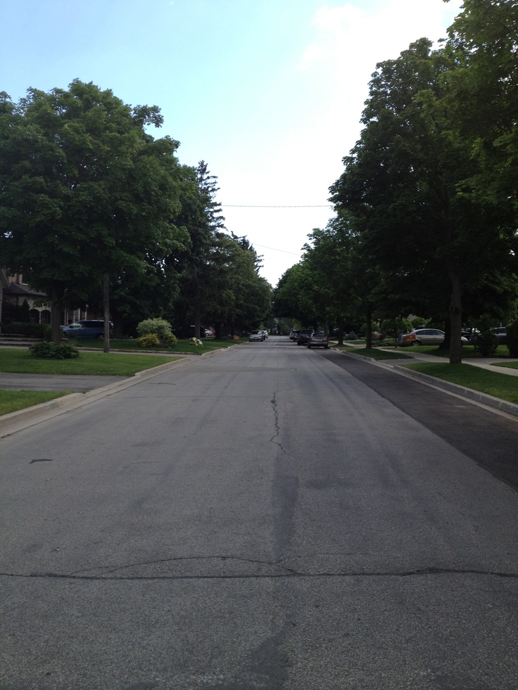Lovely Tree Lined Streets!