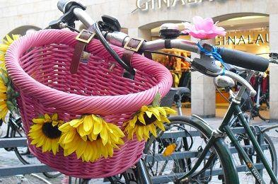 Mit rosa Korb und Blümchen. #Münster #Fahrrad