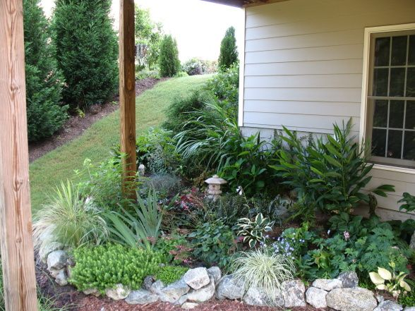 79 best images about rock garden ideas on pinterest for Garden decking planting ideas