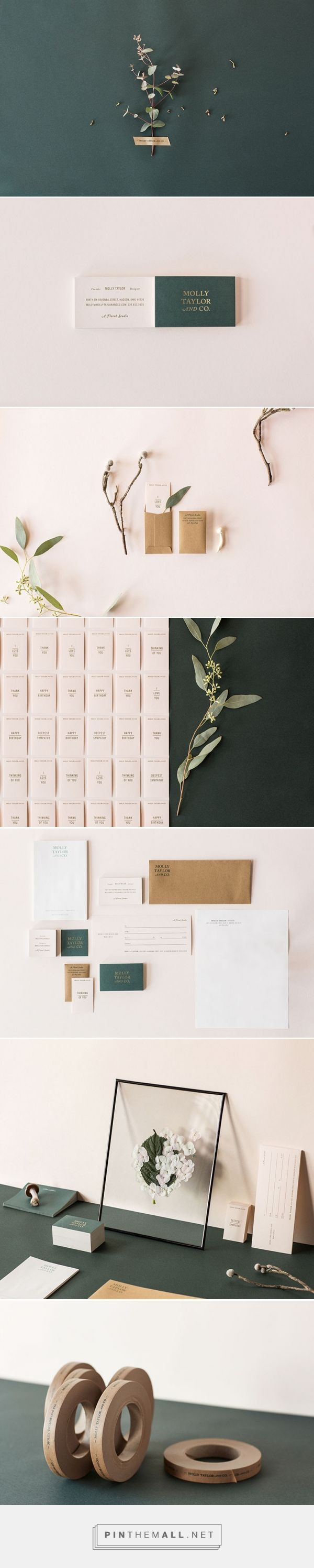 FPO: Molly Taylor & Co. Identity Materials - created via https://pinthemall.net