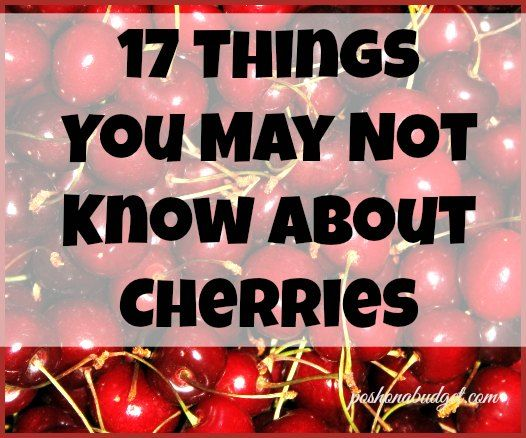 I had no idea-the darker the cherry the sweeter its flavor  http://poshonabudget.com/2015/07/17-things-you-may-not-know-about-cherries.html
