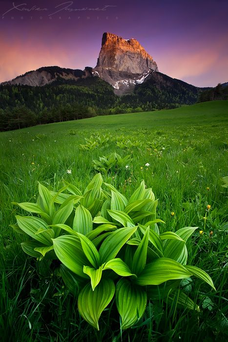 Magic sunset after a short thunderstorm over the Mount Aiguille, Vercors Natural Park in french Alps