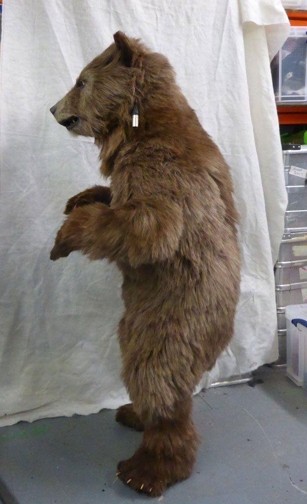 Best 25+ Bear costume ideas on Pinterest | Bear makeup ... - photo#42