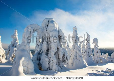 Trees covered by heavy snow in Lapland Finland on sunny cold day. Photo taken on mountain near popular tourist ski resort. - stock photo