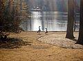 Stony Brook Village.  So many memories of feeding the ducks here. :)