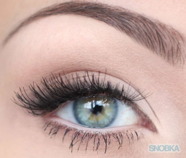 great brows and lashes!