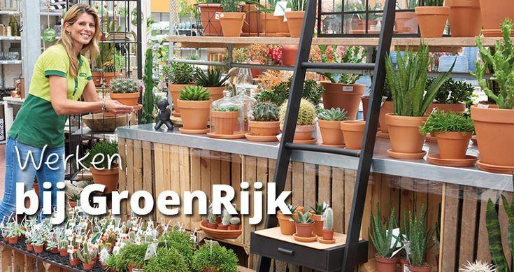 De leukste tuincentrum vacatures vind je bij GroenRijk! Op deze website vind je alle actuele tuincentrum vacatures van de GroenRijk tuincentra in Nederland. Je kunt zoeken op vestiging of provincie, dat maakt het gemakkelijk om een baan bij jou in de buurt te vinden. Bij GroenRijk zijn er diverse afdelingen waar je kunt werken. De tuincentra zijn opgedeeld in het BinnenRijk, BuitenRijk, WaterRijk, SfeerRijk en DierenRijk.