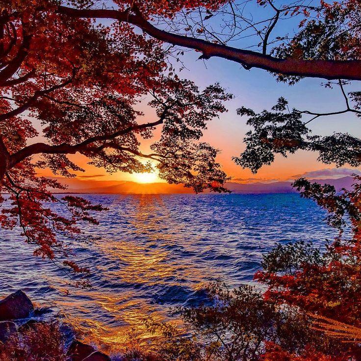おはようございます♪(๑ᴖ◡ᴖ๑)♪ 今日は良い天気ですねぇ^^ 明日は☔️予報なので今日はお出かけ日和です✋ 近江八幡湖岸の夕暮れ🌄  #sunset #sunset_madness  #しがトコ#gobiwako  #キタムラ写真投稿  #photo_shorttrip  #nikon倶楽部  #はなまっぷ紅葉2016  #team_jp_ザ花部祭り2016秋  #team_jp_西(滋賀) #bestjapanpics  #bestnatureshot  #super_photosunsets  #絶景秘境満喫旅 #japan_daytime_view  #japan_of_insta  #japan_photo_now  #loves_united_japan #jp_views2nd  #instagramjapan  #ig_japan  #lovers_nippon  #loves_nippon  #wu_japan  #wp_紅葉2016  #わたしのふるさと自慢 #worldbestgram #tokyocameraclub  #東京カメラ部…