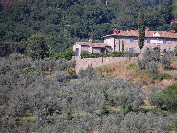 Extremely fascinating Tuscan country luxury Villa Valliana is great for sight seeing. Well immersed in the countrylife while sitting on the hills over Florence, the villais equipped with luxury and modern facilities. http://www.ciaoitalyvillas.com/tuscany-vacation-rentals/florence/bagno-a-ripoli-villas/10469