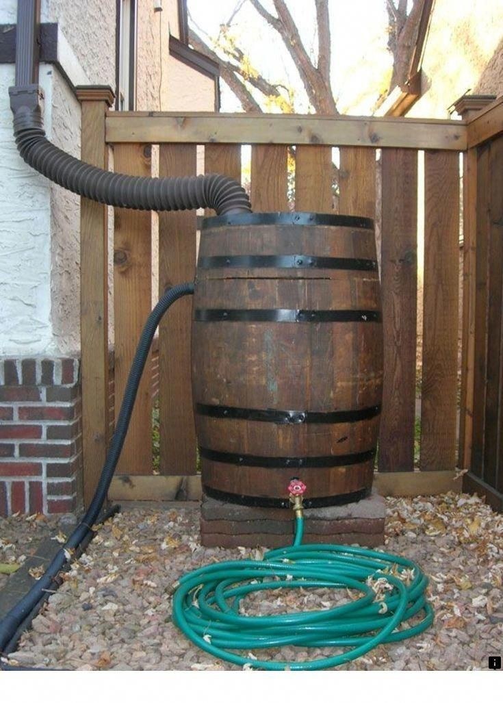 Pin By Harry Druiff On Ogrody In 2020 Water Barrel Rain Barrel Rain Water Collection