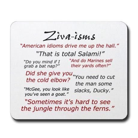 I love Ziva! We have to forgive her! She speaks several languages, including Hebrew, Arabic and English!--NCIS