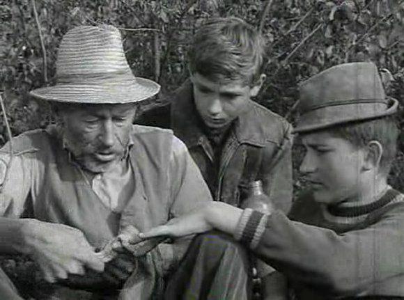 Tüskevár: 1967 Magyar fekete-fehér ifjúsági televíziós sorozat (8 részes)