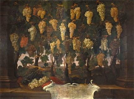 37 Uve di Bartolomeo Bimbi. I dipinto fu commissionato da Cosimo III de' Medici e si trova nella Villa Poggio a Caiano. 37 sono le uve conosciute in Toscana in quel momento storico.