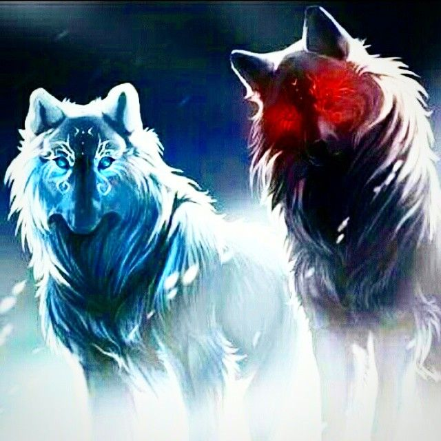 raava | Search Instagram | Pinsta.me - Instagram Online Viewer-Raava and Vaatu as wolves!