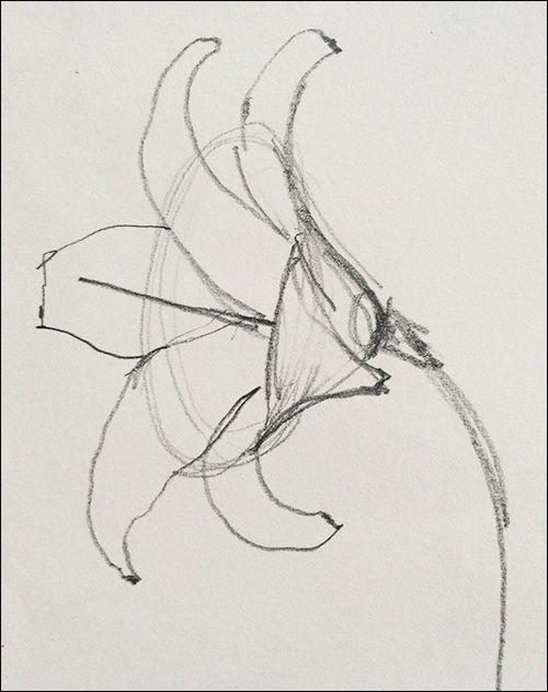 Trumpet-Flower-Form