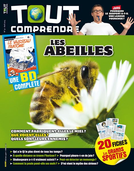 Tout comprendre n 31 avril 2015 les abeilles presse magaz - Comment changer les plombs ...