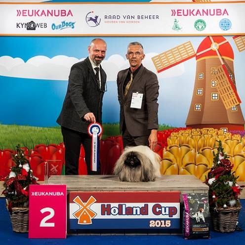 Holland Cup in Amsterdam, December 2015, my second choice at BIS of group 9