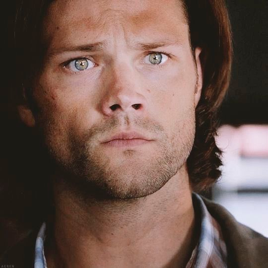 Best 25+ Sam winchester actor ideas on Pinterest   Shows like ...