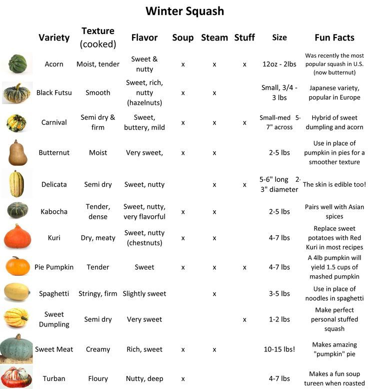 squash varieties - Google Search