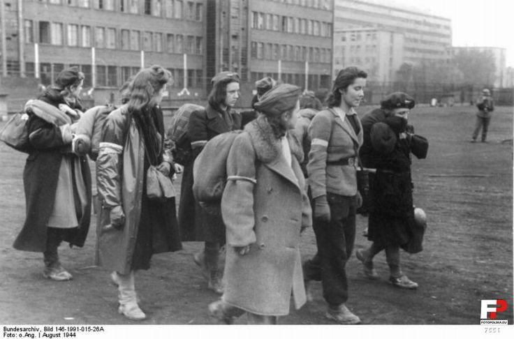 sierpnia 1944 , Gdzieś w stolicy.