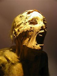 The 7 Most Terrifying Archaeological Discoveries Very interest article. It's hard to believe where we come from and what we capable of sometime!