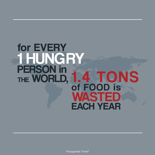 28 best images about Hunger Facts and Stats on Pinterest