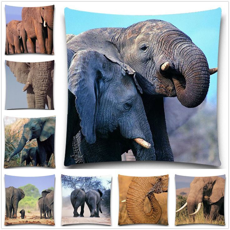 Cotton Polyester Square Pillow Cover Elephant Cushion Cover  Animal Style Home Decorative Pillow Case 5 size Wholesales. Yesterday's price: US $4.99 (4.23 EUR). Today's price: US $4.54 (3.72 EUR). Discount: 9%.