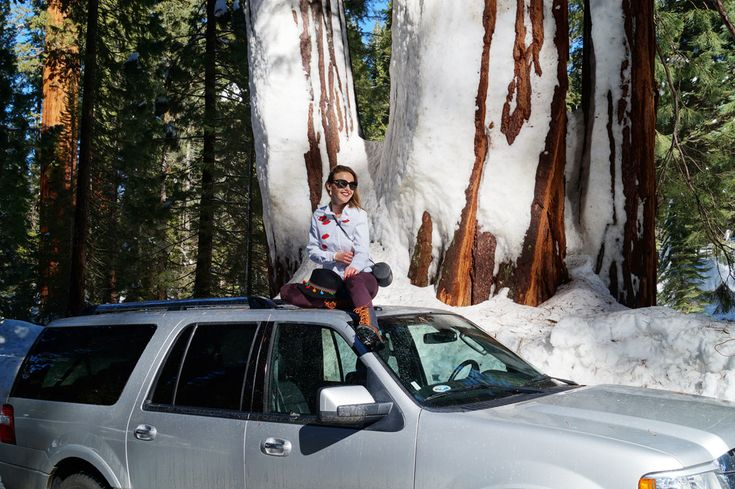 Sequoia National Park in California <3 More on: http://bit.ly/2kFZA3e