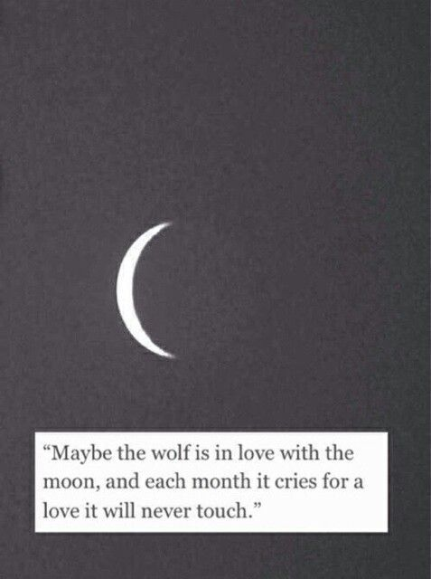 """""""Maybe the wolf is in love with the moon, and each month it cries for a love it will never touch."""""""