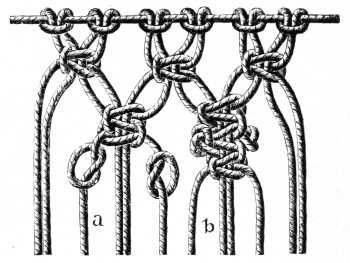 FIG. 535. KNOTTED PICOT.