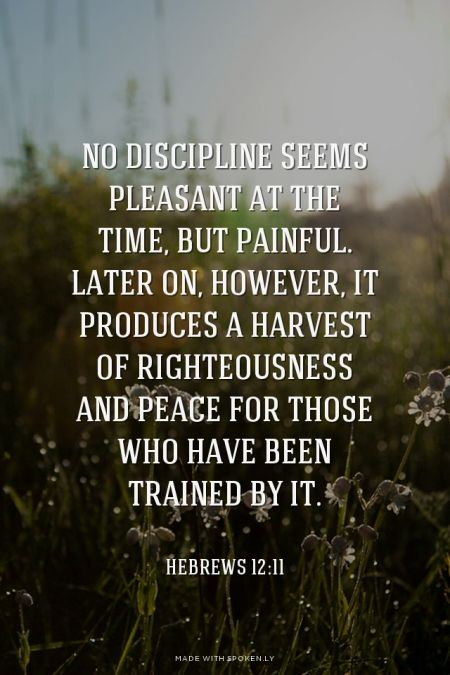 No discipline seems pleasant at the time, but painful. Later on, however, it produces a harvest of righteousness and peace for those who have been trained by it. - Hebrews 12:11: