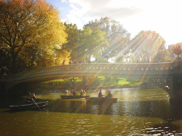 Autumn - Central Park - Bow Bridge - New York City