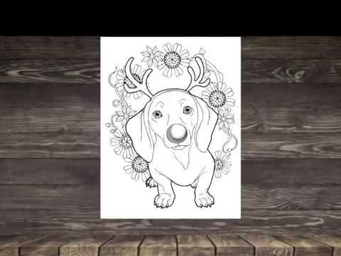 If You Love The Amazing World Of Horses Magical Enchanted Dog Lovers Adult Coloring Book This Is